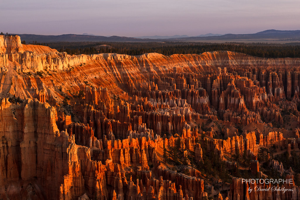 Bryce Canyon im Sonnenaufgang / Bryce Canyon at sunrise